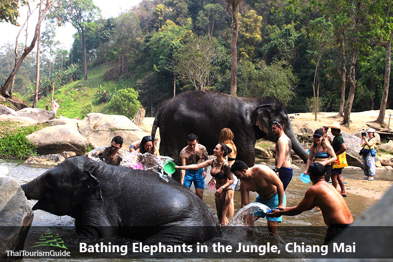 Eco Tourism Bathing with Elephant Tour Chiang Mai in Thailand.