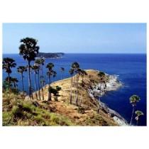 Phuket Island Package 3 Days & 2 Nights