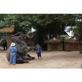 One Hour Trekking at Pattaya Elephant Village