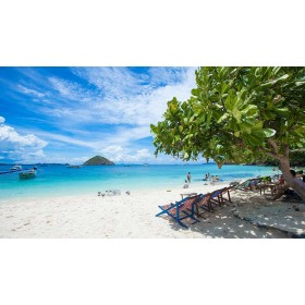 Coral Island Full Day Tour by Speed boat