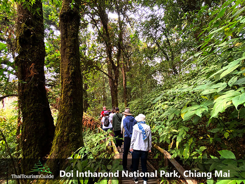 Ang Ka Nature Trail
